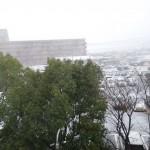 朝8時50分 雪積もる